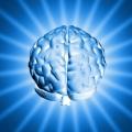 Jak zaprogramować mózg