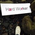 motywacja do pracy